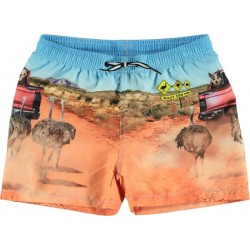 Molo: zwemshort niko in the...